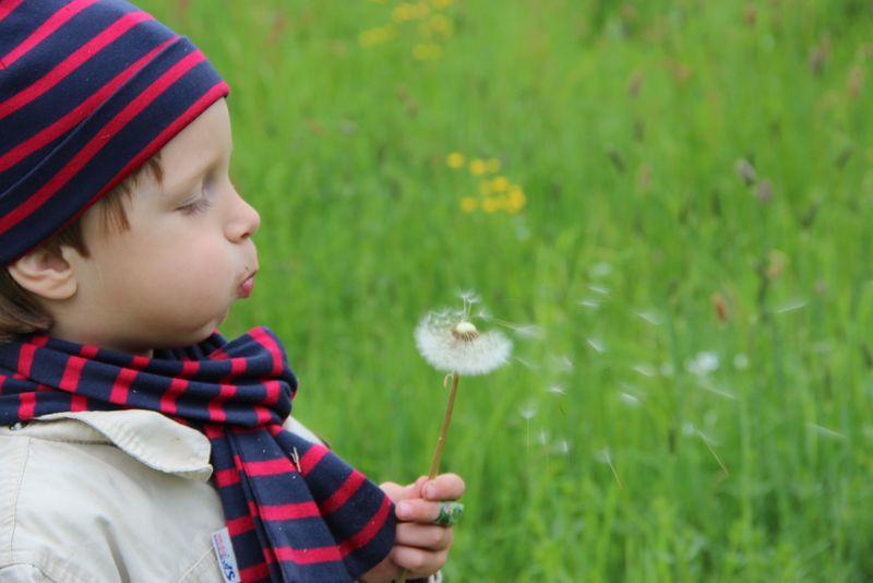 Für Eltern Mit Kleinkindern Natur Entdecken Mit Dem Eltern Kind